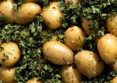 Provence kartofler